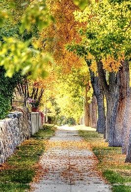 Autumn Street, Helena, Montana