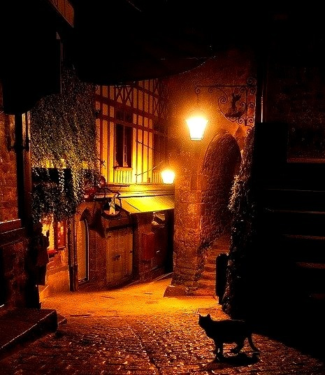 Alley Cat, Mont St Michel, France