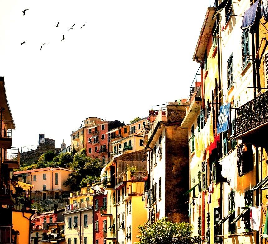 Italy (visbeek)