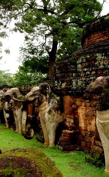 Elephants around chedi at Kamphaeng Phet Historical Park / Thailand